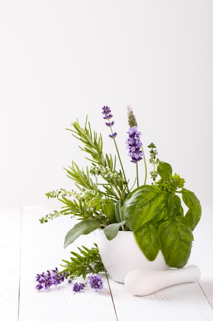 Bunch of garden fresh herbs Premium Photo