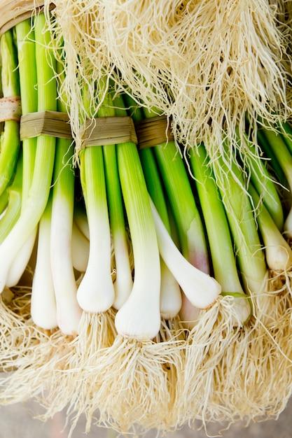 Bunch of garlic fresh raw vegetables food Premium Photo