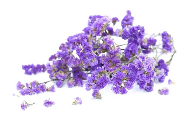 Bunch of purple flowers on white background Premium Photo