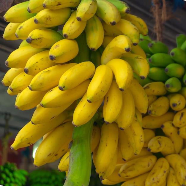 Bundles of yellow, ripe bananas. Premium Photo