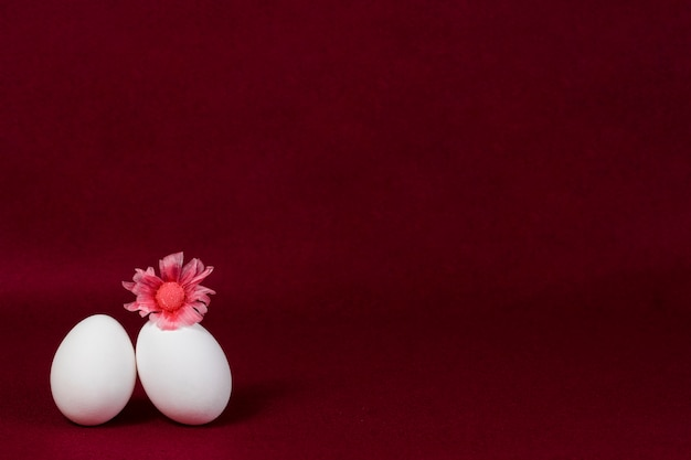 Burgundy background with two eggs and a flower Premium Photo