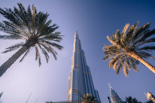 Burj khalifa in dubai Premium Photo