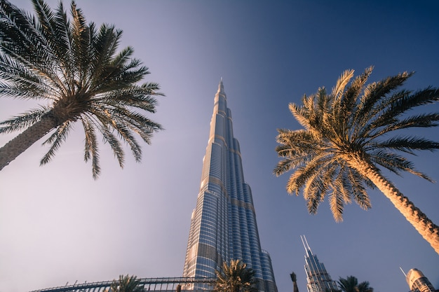 Burj khalifa in dubai Premium Photo