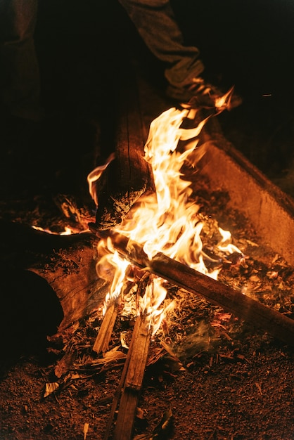 Burning bonfire, feels getting warmer from cold weather. Premium Photo