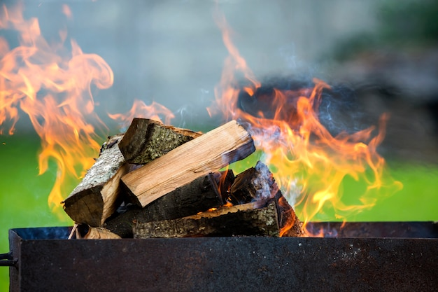 Burning in metal box firewood for barbecue outdoor. Premium Photo