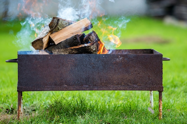 Burning in metal box firewood for barbecue. Premium Photo