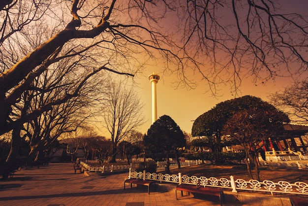 Busan tower with silhouette big tree at sunset in busan, south korea. Premium Photo