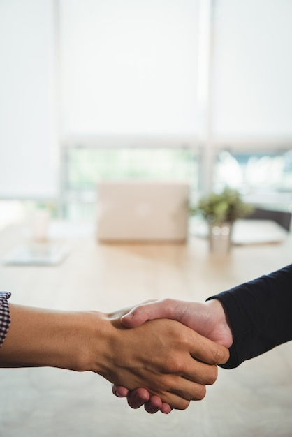 Business executives shaking hands with each other Free Photo