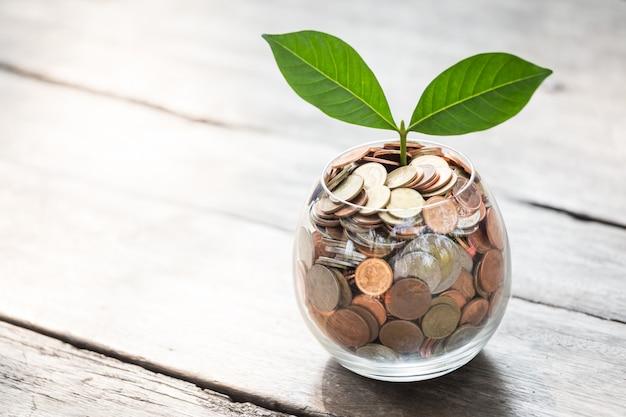 Business growth up concept Premium Photo