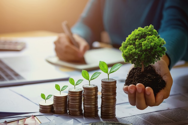 Business woman hand holding tree with plant growing on coins. concept saving money and earth day Premium Photo