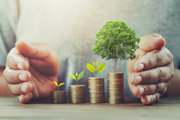 Businessman protection money on table with tree Premium Photo