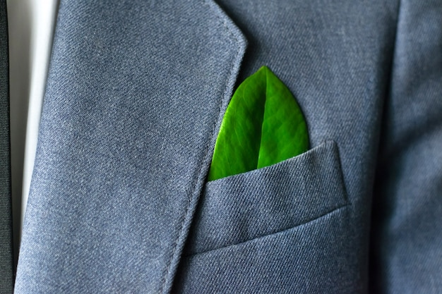 The businessman's photo in a suit with a leaf in a pocket Premium Photo