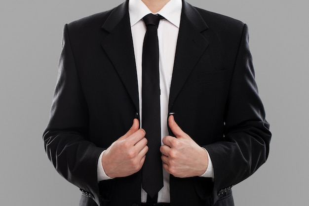 Businessman's torso in suit Free Photo