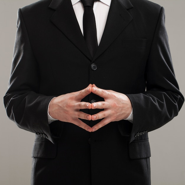 Businessman's torso in suit Free Photo