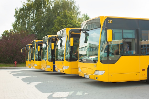 Busses parking in row on bus station Premium Photo