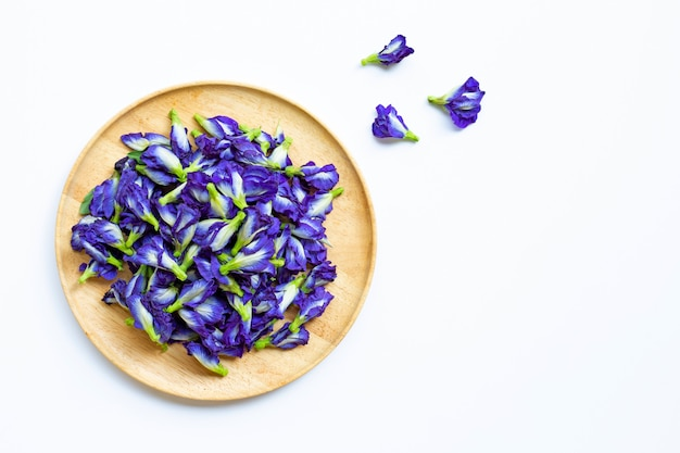 Butterfly pea flower on white Premium Photo