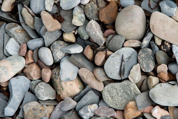 小石、ボンベイ、ノリスポイント、グロス・モーン国立公園、ニューファンドランドアンドラブラドール、cのクローズアップ Premium写真