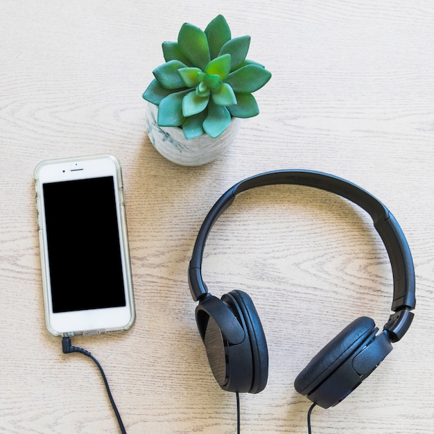 Cactus plant; cellphone and headphone on wooden plant Free Photo