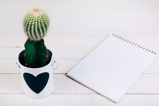 Cactus plant in cup near the blank spiral notepad on wooden desk Free Photo