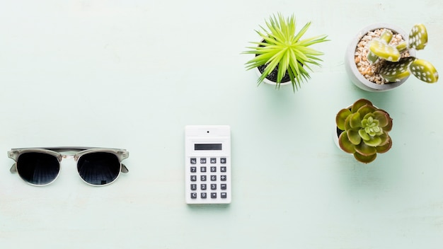 Calculator and small ornamental plants on light surface Free Photo