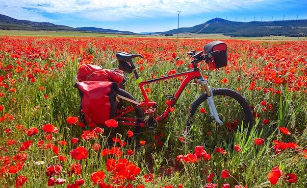 Camino de santiago in bicycle saint james Premium Photo