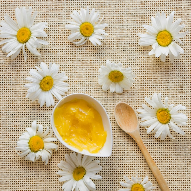 Camomiles and shea butter Free Photo