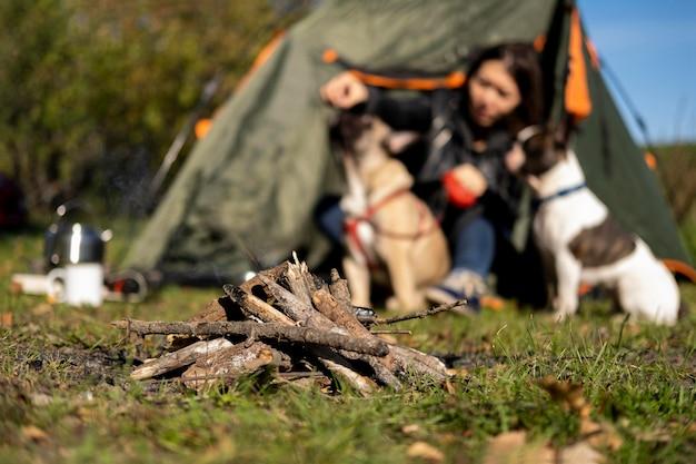 Vista frontale del fuoco di accampamento e donna vaga che gioca con i cani Foto Gratuite
