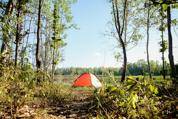 Camping in a forest. morning scene with tourist tent in green forest near of the lake Premium Photo