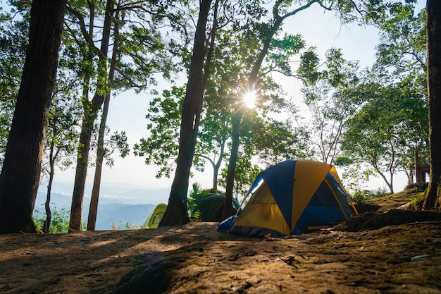 Camping tent on the grass Premium Photo