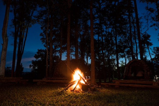 Camping with campfire landscape Premium Photo