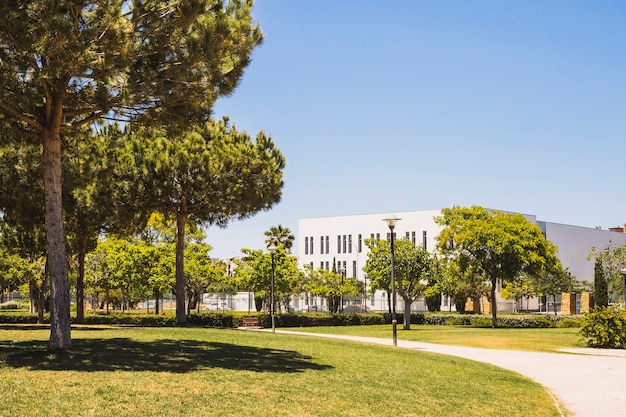 Campus lawn on sunny day Free Photo