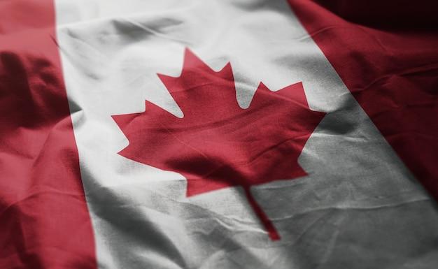 Canada flag rumpled close up Premium Photo