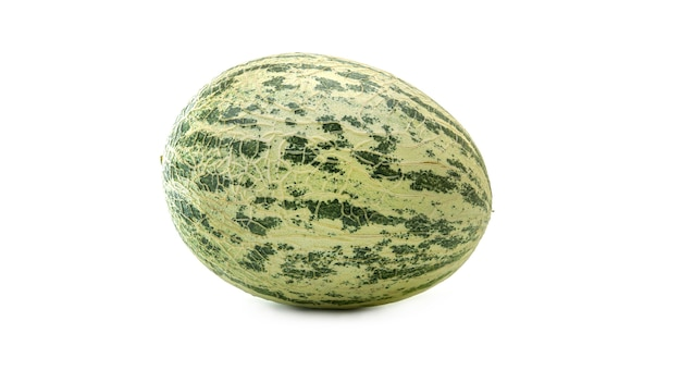 Cantaloupe melon (cucumis melo) or kekiri or cavaillon melon or muskmelon. Premium Photo