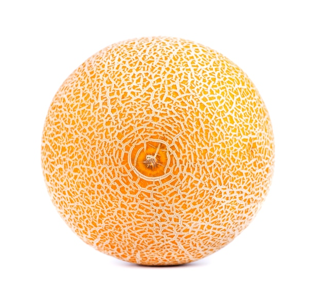 Cantaloupe melon isolated on white space. juicy and sweet cantaloupe melon isolated on white space. Premium Photo