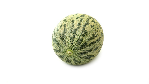 Cantaloupe melon. Premium Photo