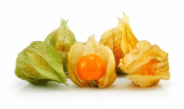 Cape gooseberry (physalis) isolated on white background Premium Photo