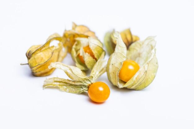 Cape gooseberry (physalis peruviana) or ground cherries, physalis minima, pygmy ground cherry, inca berry, golden strawberry, strawberry tomato, husk tomato isolated on white wall Premium Photo