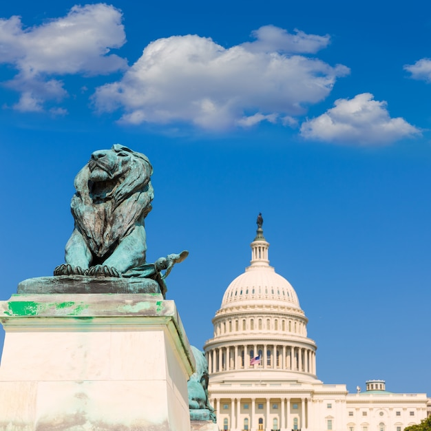 Capitol building washington dc sunlight congress Premium Photo