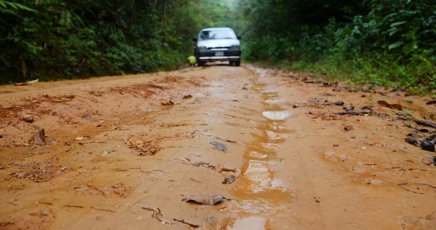 A car stuck in the slippery dirt road while it was raining in the forest. Premium Photo