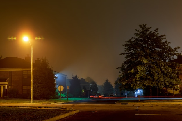 Car trace on an empty night road in a fog Premium Photo