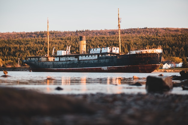Cargo ship with forest behind Free Photo