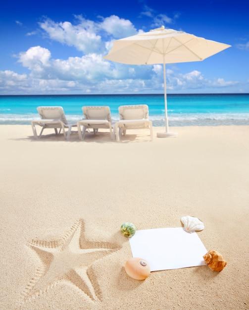 Caribbean beach sea blank copy space starfish shells Premium Photo