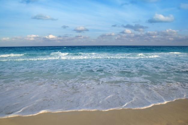 Caribbean sea tropical turquoise beach blue Premium Photo