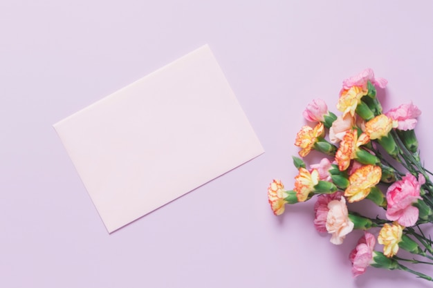 Carnations near paper sheet Free Photo