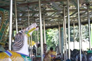 Carousel theme park, event Free Photo