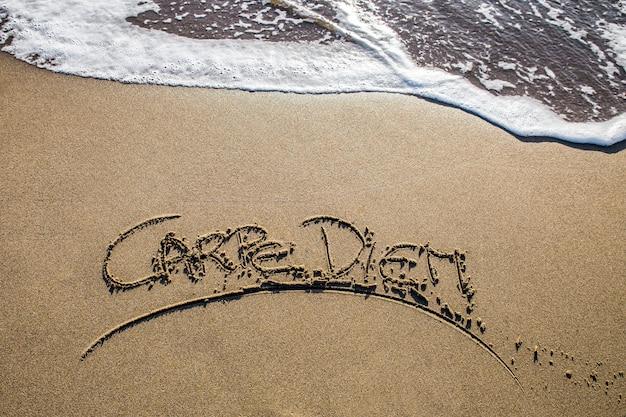 Carpe diem written on the sand beach Premium Photo