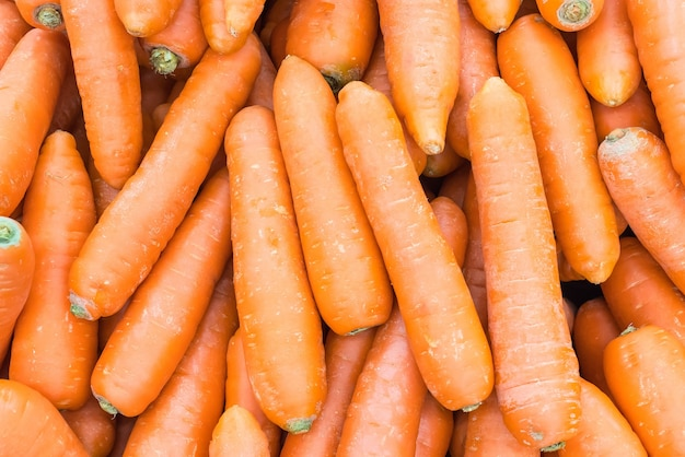 Carrot background Free Photo