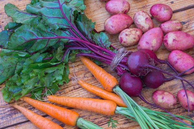 Морковь и свекла с стеблями и листьями, плоды картофеля. Premium Фотографии