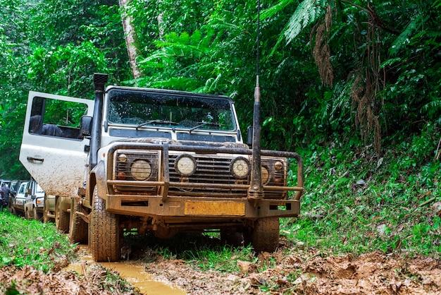 アフリカの大雨林での車の待ち行列 Premium写真