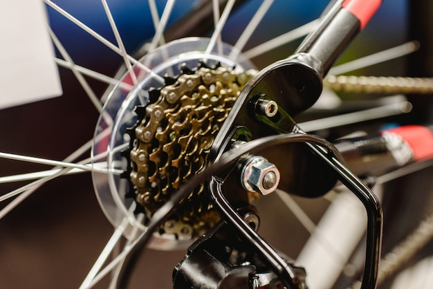 Cassette on the rear wheel of a mountain bike to change gears. Premium Photo